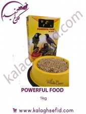 POWERFUL FOOD مرغ مینا